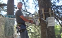 Sisteron : partez à l'aventure dans les arbres !