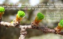 Le réchauffement climatique : quel impact sur les arbres ? Les chercheurs ont besoin des citoyens