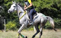 Isée et les chevaux endurants