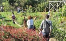 """""""Bienvenue dans mon jardin au naturel"""" 9 ème édition"""