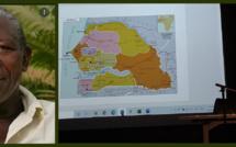 Gora N'Diaye, fondateur de Jardins d'Afrique