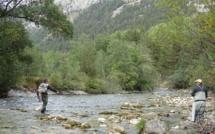 Les barrages de galets: un réel impact sur la santé de nos rivières !