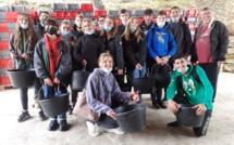 Des lycéens sisteronais au cœur des vendanges