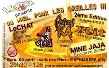 Du miel dans les oreilles, un festival qui va déboucher vos esgourdes dés ce samedi à Espinasse.