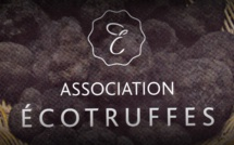 Ecotruffes: une association qui a du nez